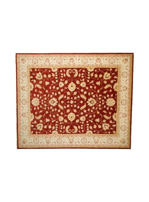 Teppich Chobi Rot 250x300 cm Afghanistan - 100% Hochlandschurwolle