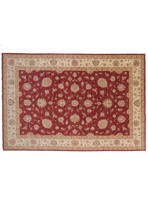 Dywan Chobi Czerwony 250x370 cm Afganistan - 100% Wełna owcza wysokogórska