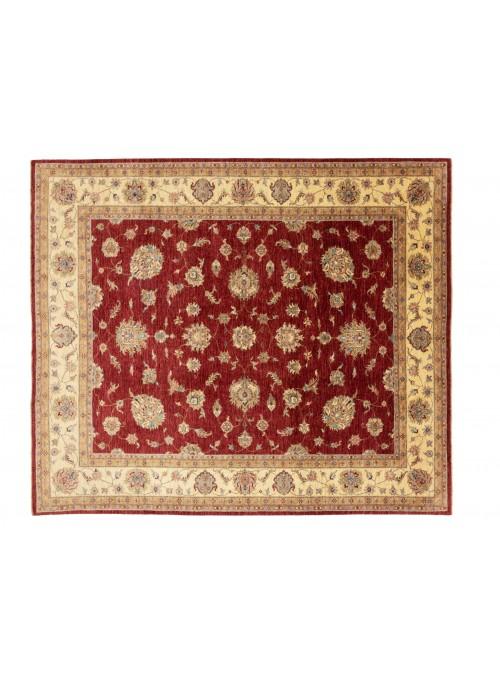 Dywan Chobi Czerwony 260x300 cm Afganistan - 100% Wełna owcza wysokogórska