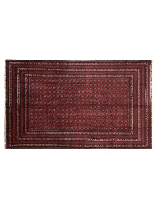 Dywan Mauri Czerwony 200x290 cm Afganistan - 100% Wełna owcza