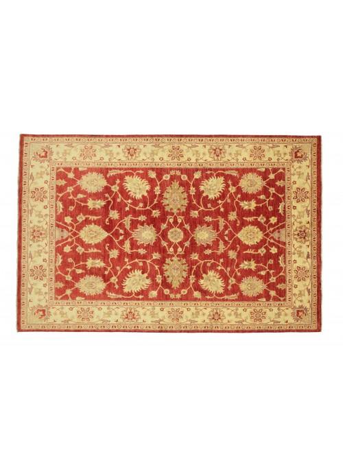 Teppich Chobi Rot 170x240 cm Afghanistan - 100% Hochlandschurwolle